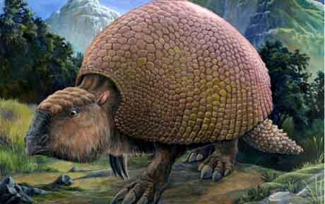 Glyptodonts__1469179a.jpg